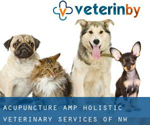 Acupuncture & Holistic Veterinary Services of NW Florida Biltmore Beach