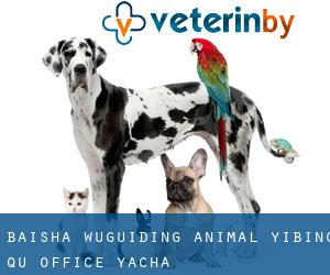 Baisha Wuguiding Animal Yibing Qu Office Yacha