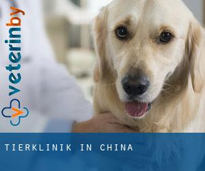 Tierklinik in China