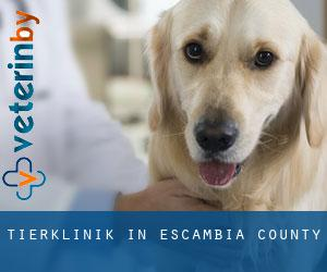 Tierklinik in Escambia County