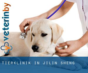 Tierklinik in Jilin Sheng