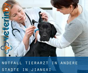 Notfall Tierarzt in Andere Städte in Jiangxi