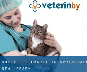 Notfall Tierarzt in Springdale (New Jersey)