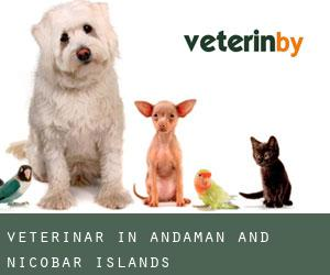 Veterinär in Andaman and Nicobar Islands