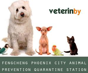 Fengcheng Phoenix City Animal Prevention Quarantine Station