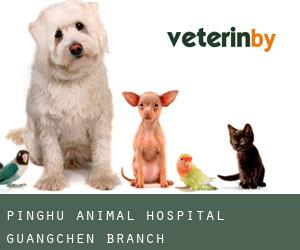 Pinghu Animal Hospital Guangchen Branch